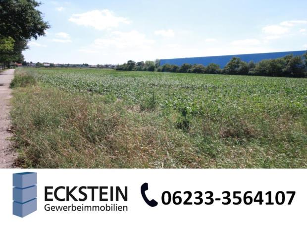10.000 m² in Bestlage Worms-Süd - IS 3929
